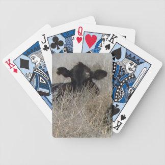 Roligt svart kalvnötkreatur vänder mot westernt spelkort