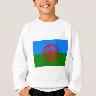 Roma flagga (den Romani flagga) Tee