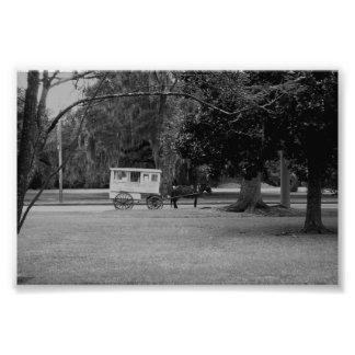 Romerskt godisvagnsfoto fototryck