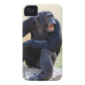 Ropa schimpans iPhone 4 cover