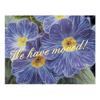 Rörs vykort med blåttblommadesign