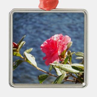 Rosa Azalea med blått sjöbakgrund Julgransprydnad Metall
