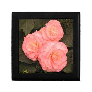 Rosa begoniablommor minnesask