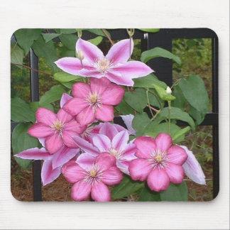 Rosa blommamousepad för clematis AA Musmatta