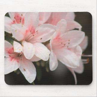 Rosa blommigt musmatta