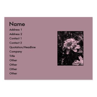 Rosa blommor. Clematis. Stilfull design Set Av Breda Visitkort