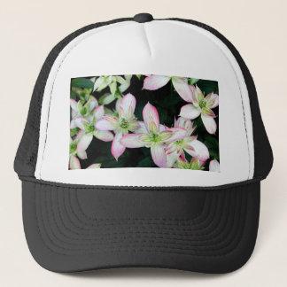 Rosa blommor. Clematis. Truckerkeps