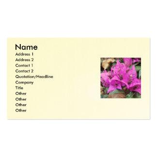 Rosa Bougainvilleablommor Set Av Standard Visitkort