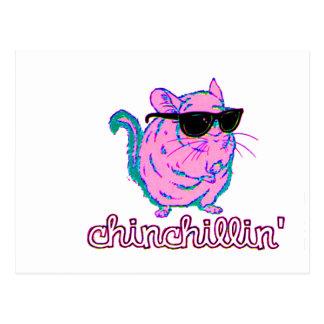 Rosa Chinchillin för neon Chinchilla Vykort