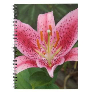 Rosa dagdrömmareanteckningsbok anteckningsbok med spiral