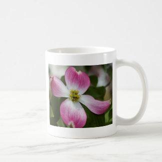 Rosa Dogwood blomstrar makro Kaffemugg