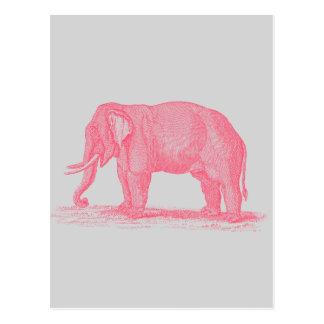 Rosa elefant för vintage på gråa 1800selefanter vykort