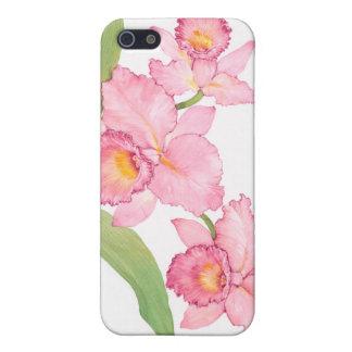 Rosa exotiska vattenfärgblommor iPhone 5 cases
