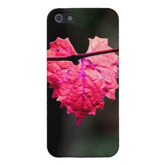 Rosa fodral för murgrönahjärtaiPhone 5 iPhone 5 Skal