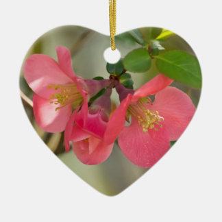 Rosa glöd för blommarQuince Julgransprydnad Keramik