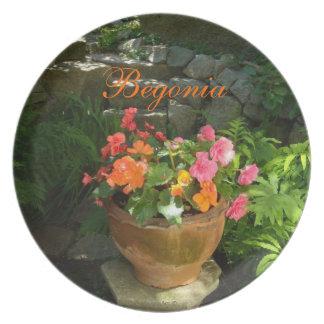 Rosa granitträdgård för Begonia Tallrik