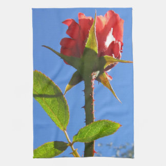 Rosa handduk kökshandduk