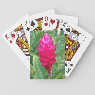 Rosa Hawaii Spel Kort