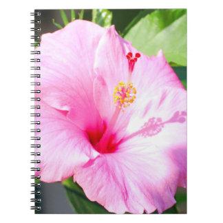 Rosa hibiskus Hawaii Anteckningsbok Med Spiral