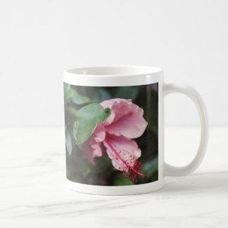 rosa hibiskus kaffemugg