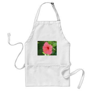 Rosa Hisbiscus blomma Förkläde