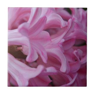Rosa hyacint kakelplatta