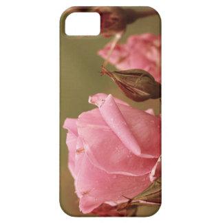 Rosa iphone caseProvo Utah Lds tempel iPhone 5 Skal