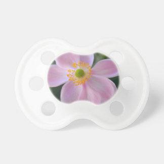 Rosa japansk anemonblomma napp