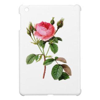 Rosa kål steg vid Pierre Joseph Redoute iPad Mini Mobil Skal