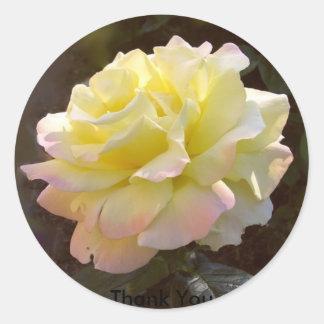 Rosa klistermärke för fred