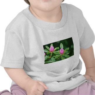 rosa knoppar t-shirts