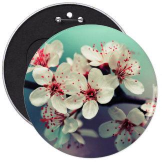 Rosa körsbärsröd blommar, Cherryblossom, Sakura Jumbo Knapp Rund 15.2 Cm