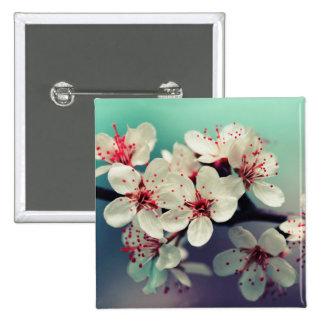 Rosa körsbärsröd blommar, Cherryblossom, Sakura Standard Kanpp Fyrkantig 5.1 Cm