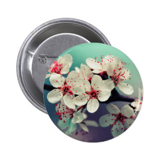 Rosa körsbärsröd blommar, Cherryblossom, Sakura Standard Knapp Rund 5.7 Cm