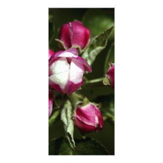 Rosa körsbärsröd blommar - rackcard anpassade rackkort