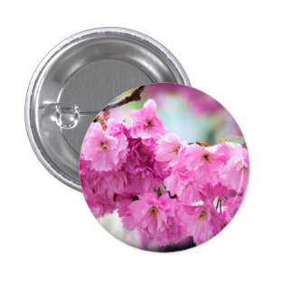 Rosa körsbärsrött Sakura träd Mini Knapp Rund 3.2 Cm