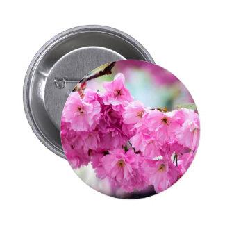 Rosa körsbärsrött Sakura träd Standard Knapp Rund 5.7 Cm