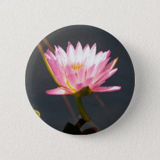 Rosa lotusblommanäckros standard knapp rund 5.7 cm