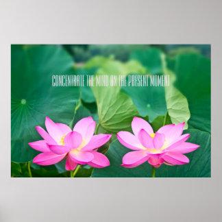 Rosa lotusblommar kopplar ihop inspiration parar d poster