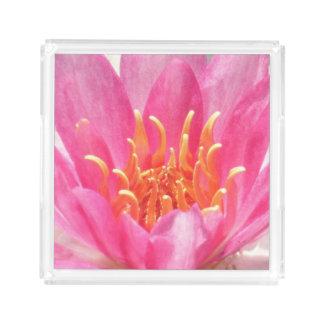 Rosa magasin för näckrosnärbildparfym bricka