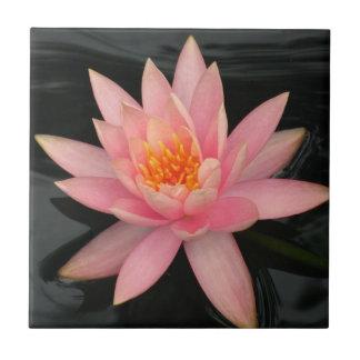 Rosa näckros kakelplatta