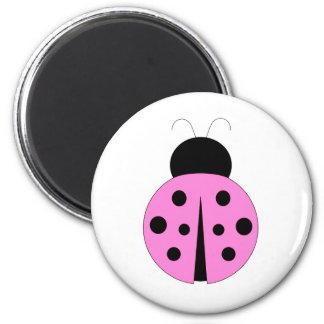 Rosa och svart nyckelpiga magnet
