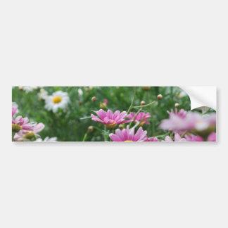 Rosa- och vitvildblommar bildekal