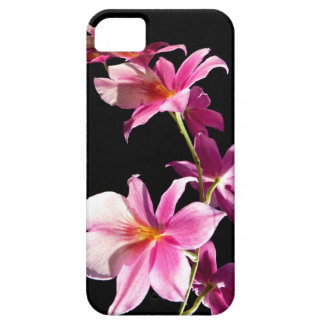 Rosa Orchid. iPhone 5 Fodraler