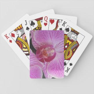 Rosa Orchid som leker kort med blommor Spel Kort