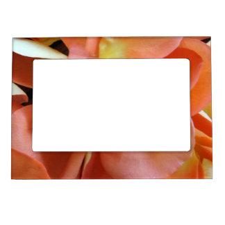 Rosa Petals Magnetisk Fotoram