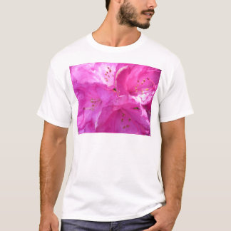 Rosa rhododendron tee