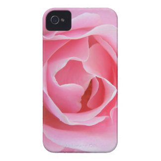 Rosa ros iPhone 4 cover
