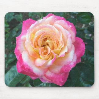 Rosa ros Mousepad Musmatta