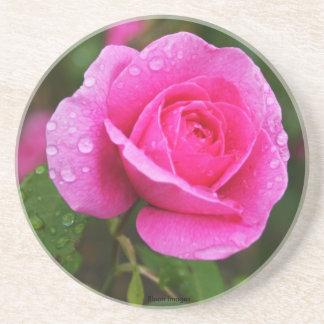 Rosa ros och dagg tappar underlägg